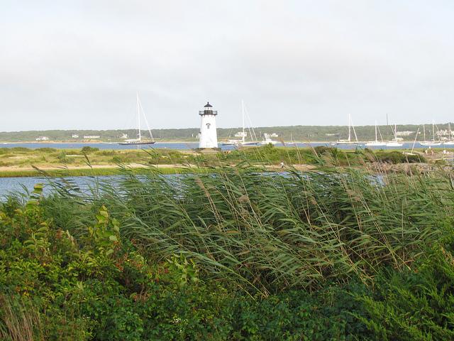 cape cod lighthouse tours